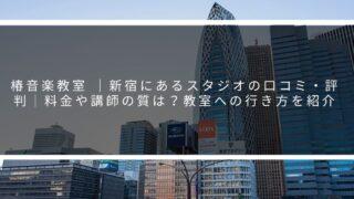 椿音楽教室  新宿にあるスタジオの口コミ・評判 料金や講師の質は?教室への行き方を紹介